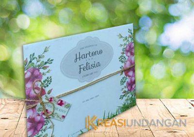 Hartono-Felisia